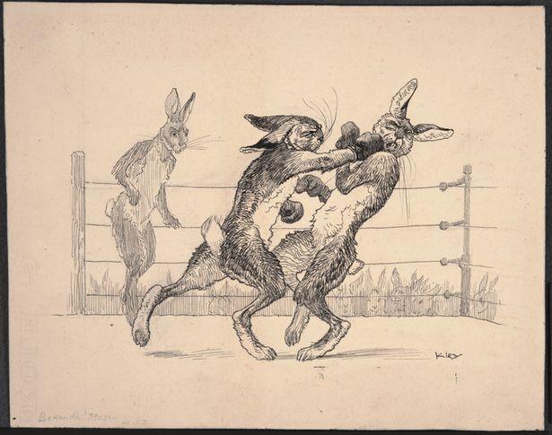 rabbitboxing
